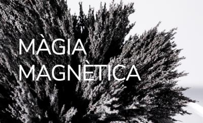 Màgia magnètica